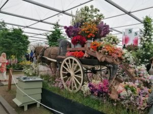 An afternoon at Chelsea Flower Show